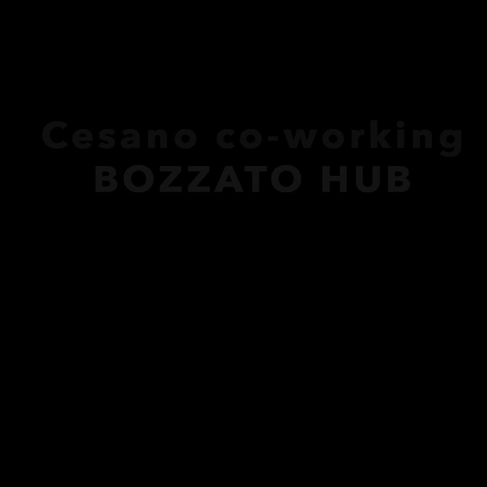 Bozzato Hub